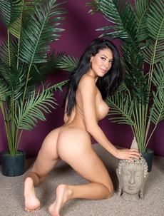 Raven Haired Latina MILF Heather Vahn Strips