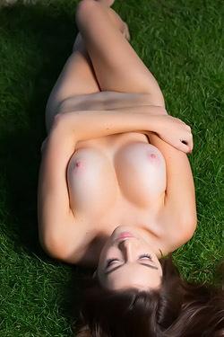 Vanda Mey